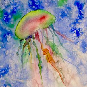 Mary Spires Jellyfish watercolor.jpg