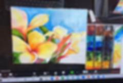 Screen Shot 2020-05-07 at 11.48.23 AM.pn