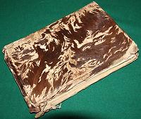 Hairy Book.JPG