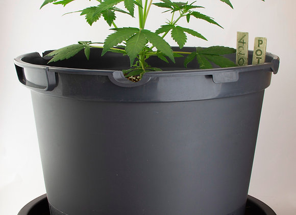 uGrow grow kit