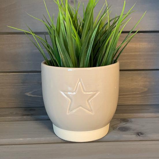 Star Cream Pot 11cm