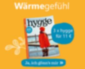 hygge-sidebar_290x235.png