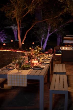 Backyard Dinner.jpg