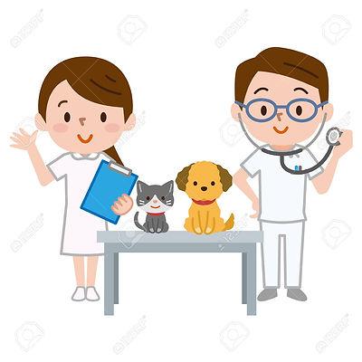 97467692-veterinarian-and-nurse-who-cons