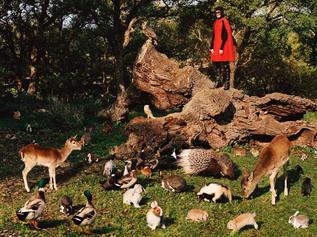 Gucci - 'So Deer To Me'