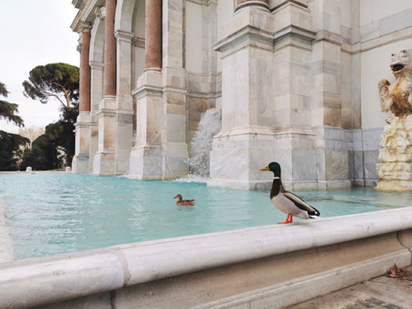 Rome. Impressies tijdens de Coronavirus periode.