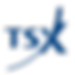 TSX_Logo.svg.png