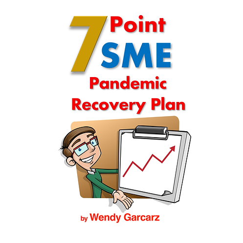 SME 7 Point Recovery Plan
