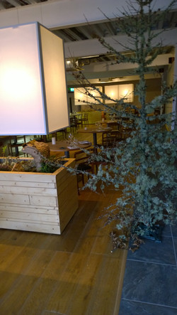 Loam Restaurant- Growing Beds and Lamp.jpg