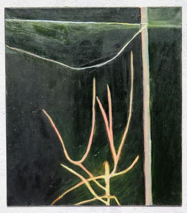 Jarní strůmek se šňůrou na prádlo