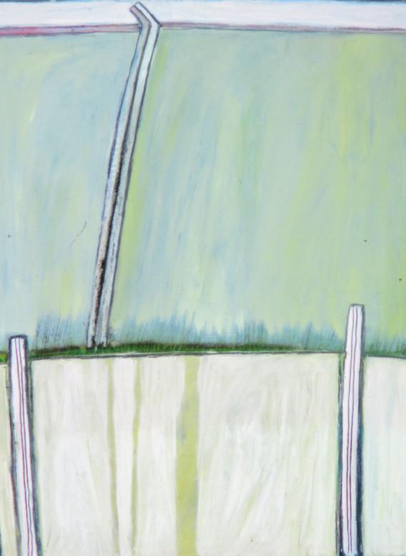 Ploty, trávy I