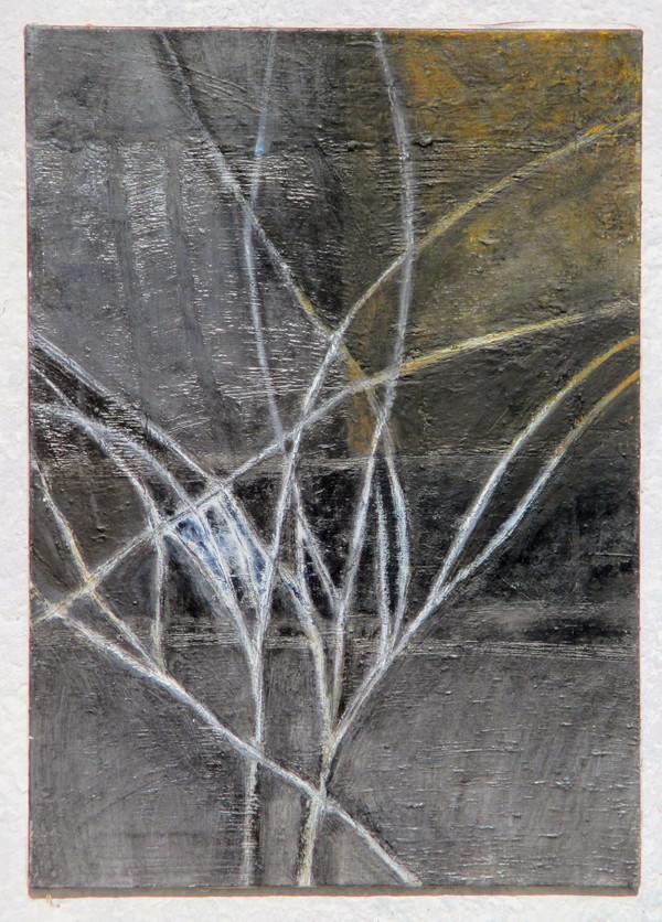 Plot a větve s jinovatkou