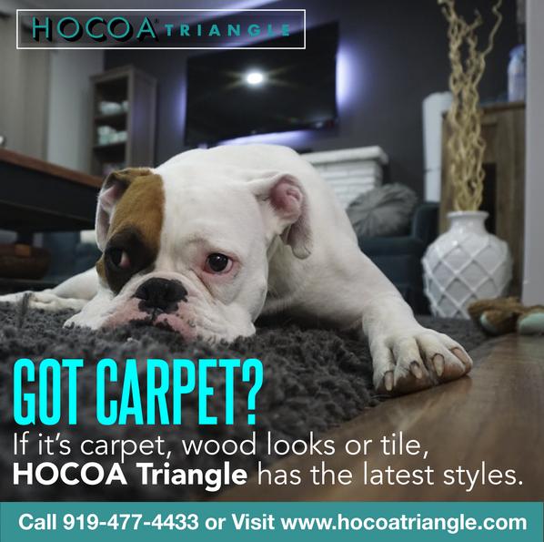 HOCOA - Got Carpet? - SOCIAL MEDIA.png