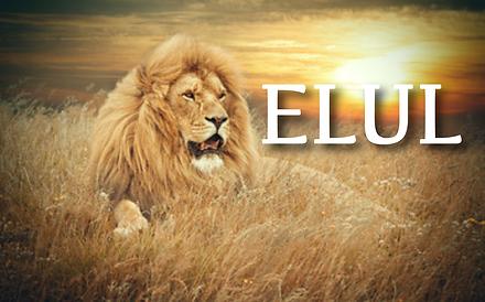 KCI - Elul Website Image.png