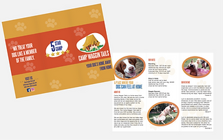 I AM Kingdom - Tri-fold Brochure Display