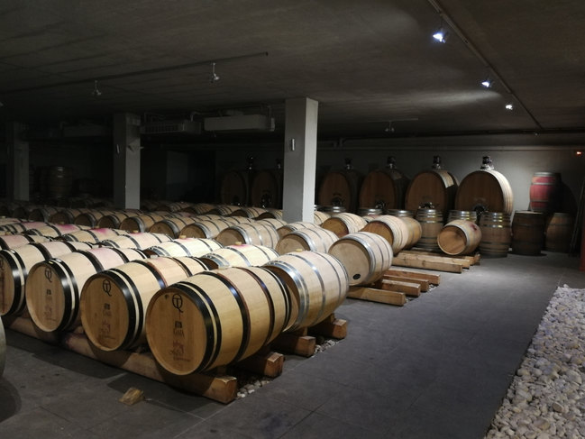 Barrel Room of Gaia Estate