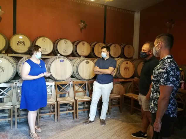 Nemea Wine Tour at Ktima Palivos