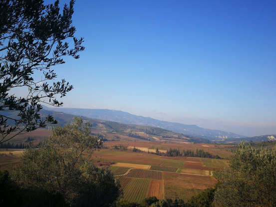 Nemea Valley during Winter
