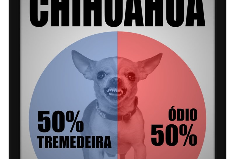 Pôster - Anatomia do Chihuahua