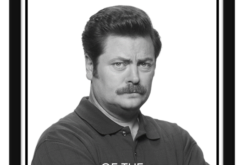 Pôster - Parks & Rec: Ron Mulher do Ano