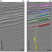 Seismic reflection images from the Anadarko Basin, showing intra-basement reflectors (mafic sills) and basement-rooted contractional faults (Kolawole et al., 2020)
