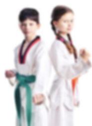 Martial Arts Point cook Taekwondo Kickboxing BJJ MMA self defence