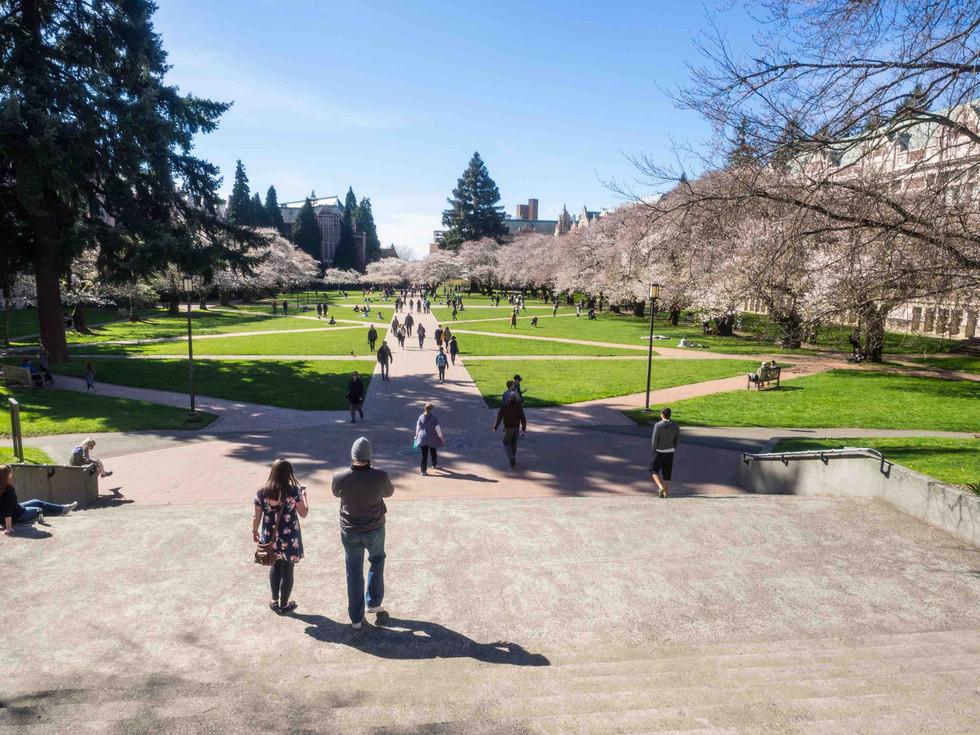 University of Washington Master Plan