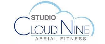 Studio Cloud Nine Aerial Fitness