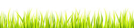 bright-springtime-lawn-banner-seamless-s