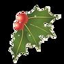 mistletoe2.png