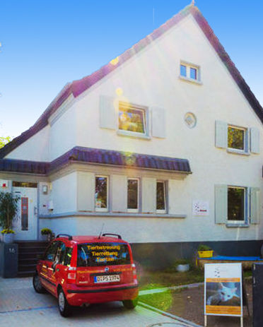 Katzenhotel in Dßüsseldorf Lohausen
