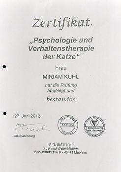 Teilnahmebescheinigung Psychologie und Verhaltenstherapie der Katze