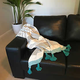 Sofa with Throw and plant - Grace This S