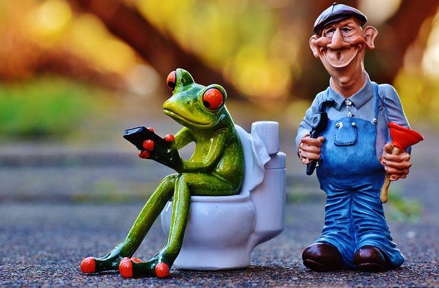 Dual Flush Toilet Repair and Tips