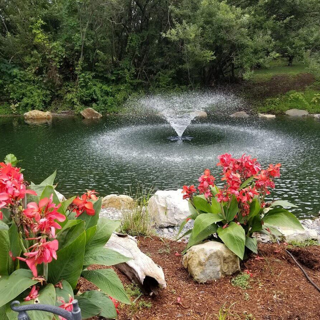 Pond rennovation / lake managment