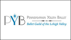 community-partner-pennsylvania-youth-bal