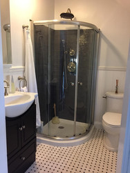 Sink Shower and Toilet Installation
