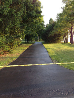 Freshly sealed driveway with trees