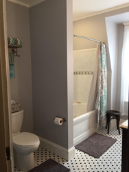 Toilet and Shower Installation