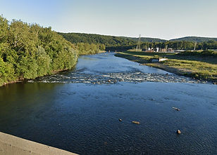 Allentown Water Quality