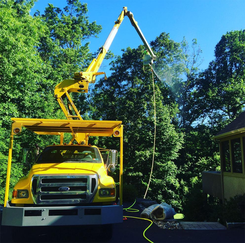 tree-spraying-pest-control-services