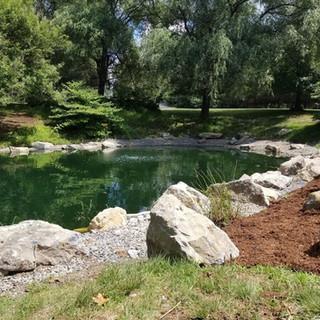 Pond rennovation / lake managment