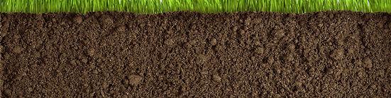 Soil Improvement Program