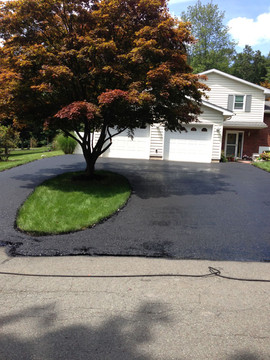 Driveway after being paved with tree