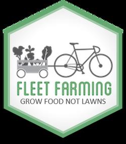 fleet badge