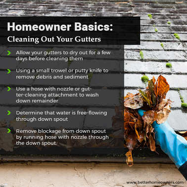 cleaning-gutters-101.jpg