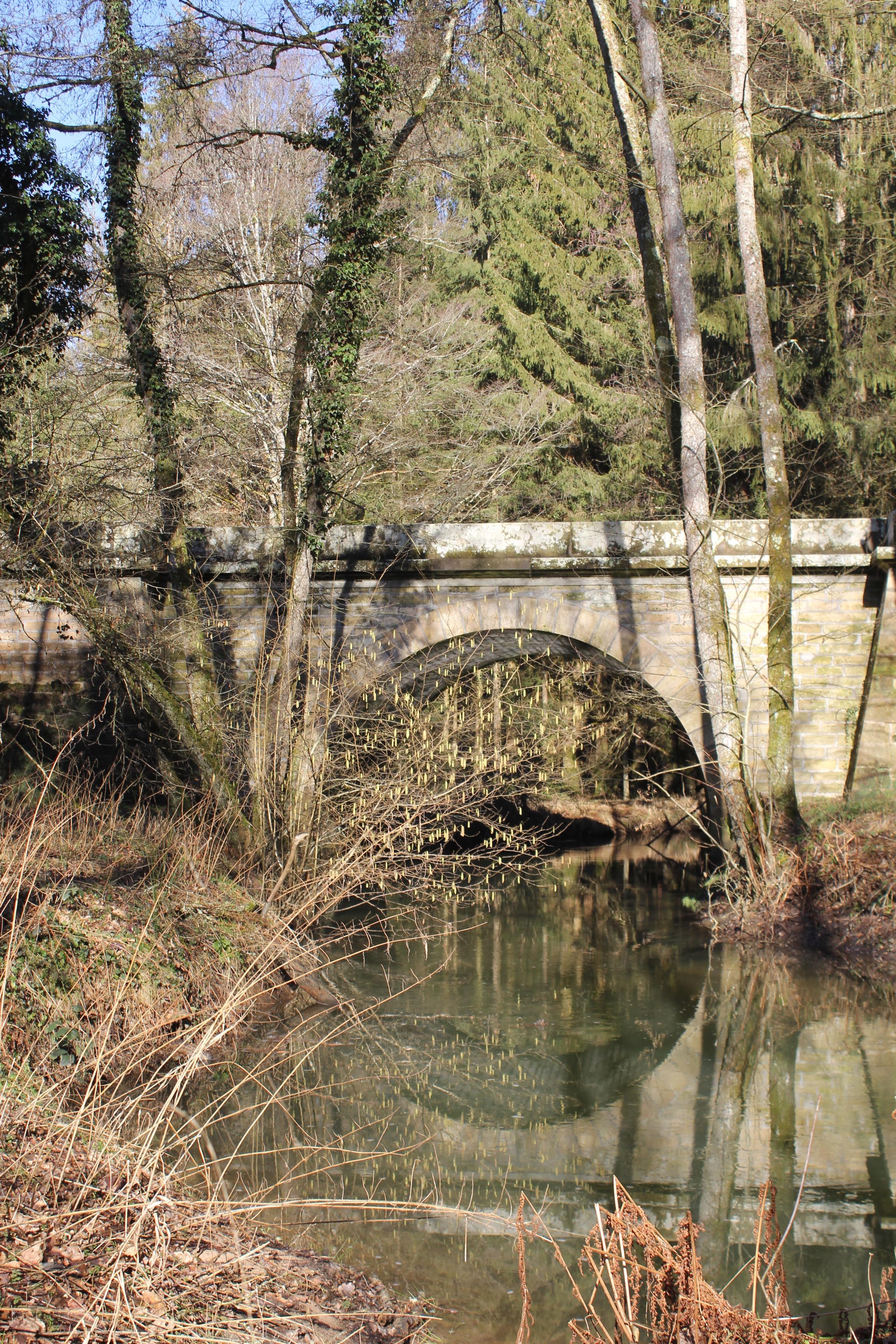 Pont sur l'Ourche au confluent