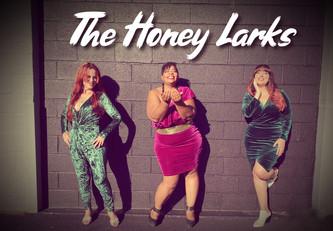 The Honey Larks