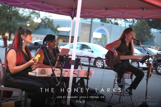 The Honey Larks