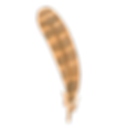 piuma 1